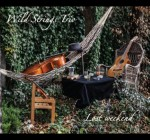 Wild Strings Trio - Lost weekend